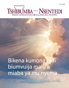 Tshibumba tshia Nsentedi No. 6 2016 | Bikena kumona bidi biumvuija malu a miaba ya mu nyuma