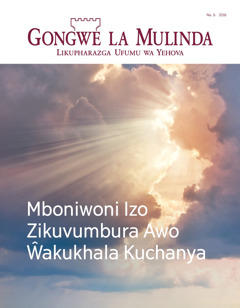 Gongwe la Mulinda Na. 6 2016 | Mboniwoni Izo Zikuvumbura Awo Ŵakukhala Kuchanya