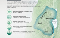 BaMasaya Baalikonseshe Ukushimika