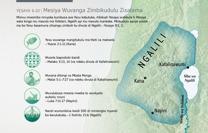 Mesiya Wuvanga Zimbikudulu Zisalama