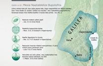 Mesia Naatalelelize Bupolofita