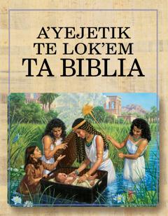 Te libro A'yejetik te lok'em ta Biblia