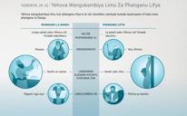 Yehova Wangukambiya Limu za Phanganu Lifya
