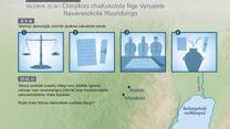Chinjikizo chaKusolola Nge VaIsalele Navavasokola Muundungo