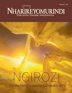 Nharireyomurindi Nhamba 5 2017 | Ngirozi Dziriko Here? Kuzviziva Kunobatsirei?