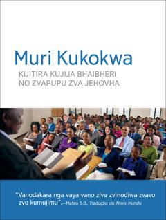 Mukoka wo Musongano wo Ungano