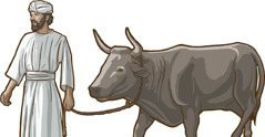 Echi israelitas ko bilé toro basuka inari