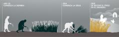 Una línea del tiempo que muestra la siembra, la siega y la recolección