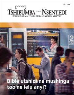 Tshibumba tshia Nsentedi