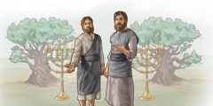 'Tufala witness' wea Revelation storyim. Each wan standap front lo lamp and olive tree