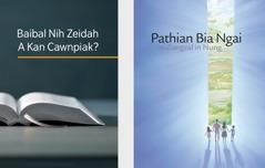 Baibal Nih Zeidah A Kan Cawnpiak? timi cauk le Pathian Bia Ngai law Zungzal in Nung timi brochure