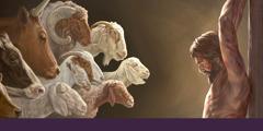 Bildeserie: 1. Kveg, sauer og geiter som skal bæres fram som ofre. 2. Jesus henger på torturpælen.