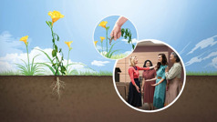 Collage: 1.A healthy wildflower with its roots in fine soil. 2.Someone removing weeds from around the wildflower. 3.Four sisters joyfully talking to one another in a Kingdom Hall.