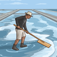 A man drying out seawater to collect salt.