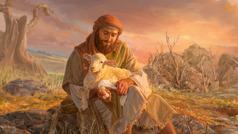 El pastor tiene al cordero en su regazo y le está vendando la pata herida.