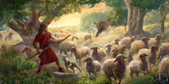 Young David, the future king of Israel, preparing to protect a flock of sheep from an attacking bear.