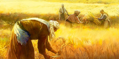 Workers in a wheat field