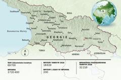 Sarintanin'i Géorgie