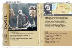 Bibelkort om Daniel