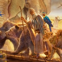Noah—He Walked With God | Videos