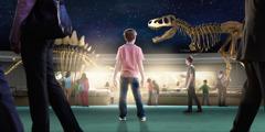 博物館で恐竜の化石を見ている男の子