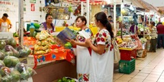 At a market, Jehovah's Witnesses teach a woman about God using a publication in her own language