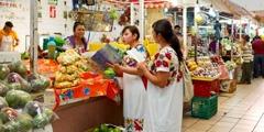 Jehovan todistajat opettavat naista kauppahallissa käyttämällä julkaisua, joka on käännetty hänen äidinkielelleen.