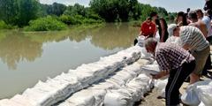 堤防の補強作業を行なっている証人たち