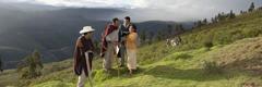 Testimoni di Geova predicano in Perù