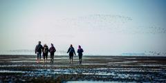 شهود يهوه يمشون في قاع بحر الشمال ليصلوا الى ثلاث من جزر هاليغن