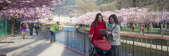 Martor al lui Iehova predicând în Andorra