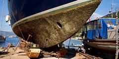 Dagiti barnacle iti sirok ti barko