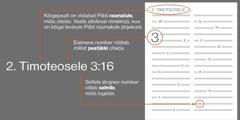 Piibli raamatud, peatükid ja salmid