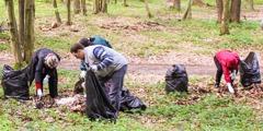 Jehovah se Getuies help om 'n woud naby Lviv, Oekraïne, skoon te maak