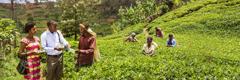 Martori ai lui Iehova predicând în Burundi
