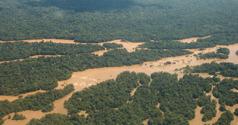 Ilmakuvaa Amazonin sademetsästä ja Maronijoesta.