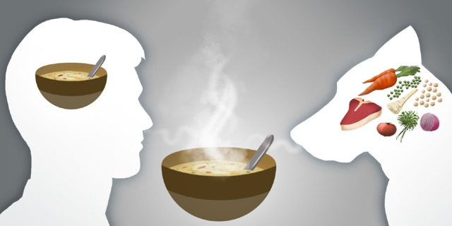A bowl of soup is superimposed on a man's head, but every ingredient in the recipe is superimposed on a dog's head