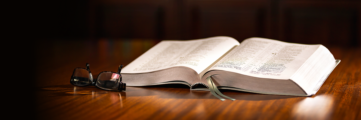 Videoteca En Linea Videos De Jw Org En Espanol Read and study the bible using the new world translation. videoteca en linea videos de jw org